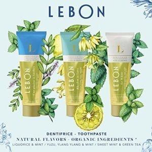 LEBON BLUE TRAVEL BOX